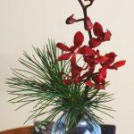 我が家の、小さな小さな正月花