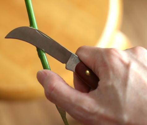 フローリストナイフ 使い方