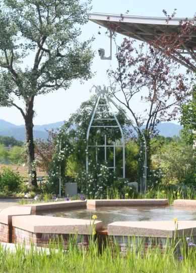 越後丘陵公園ばら園